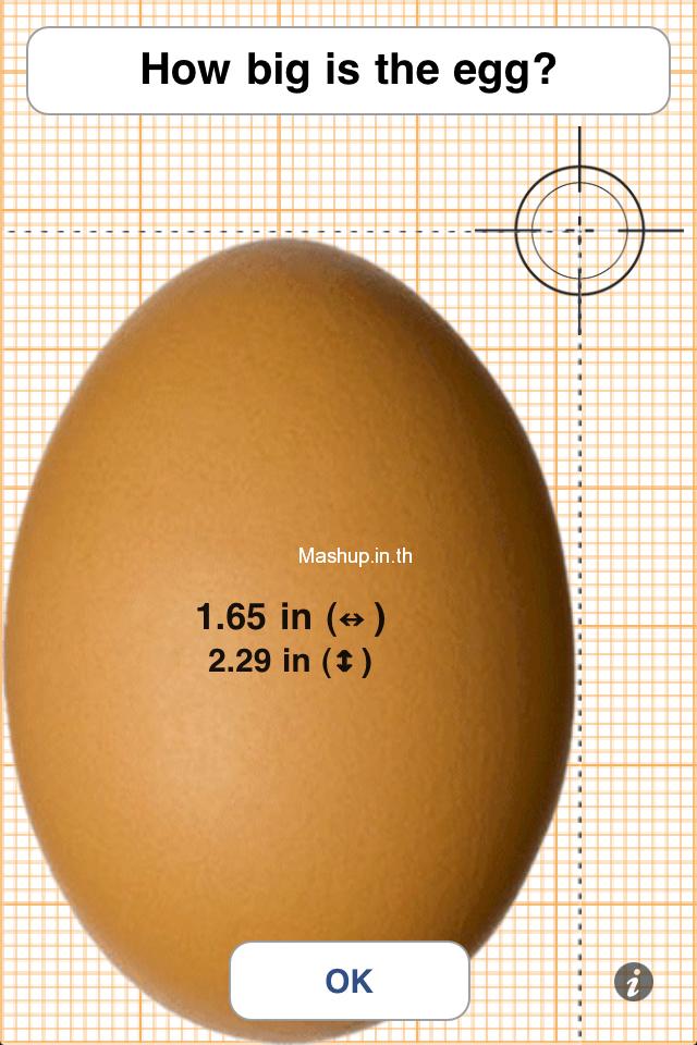2 วัดขนาดไข่ไก่ด้วยหน้าจอ